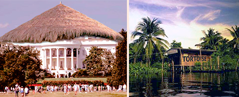 two pics, the white hut which looks identical to the famous white house except it has a straw thatched roof, wooden hut with tortoise written on it in a deep jungle setting by the water